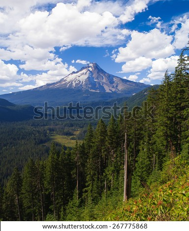 Majestic View of Mt. Hood on a bright, sunny day during the summer months - stock photo