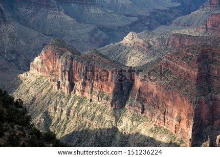 Majestic view of the Grand Canyon, North Rim, with the rocks lighted by the first sunrays at sunrise in National Park, Arizona, USA