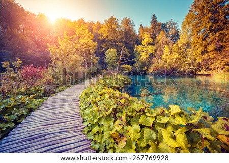 Majestic view on turquoise water and sunny beams in the Plitvice Lakes National Park. Croatia. Europe. Dramatic unusual scene. Beauty world. Retro filter and vintage style. Instagram toning effect. - stock photo