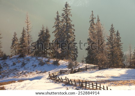 Majestic winter landscape glowing by sunlight. Dramatic wintry scene. Carpathian, Ukraine, Europe. - stock photo