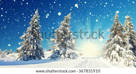 Majestic winter landscape glowing by sunlight in the morning