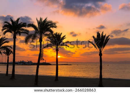 Majorca El Arenal sArenal beach sunset near Palma de Mallorca in Balearic Islands spain
