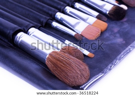 Make-up brushes in leather case