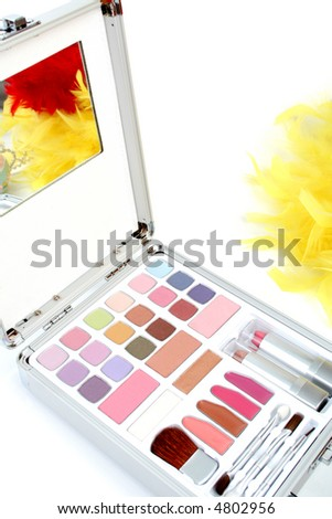 Makeup briefcase and feathers 2