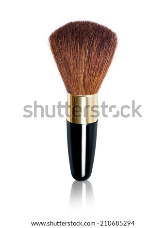 Makeup Brushe with reflection on isolated white background