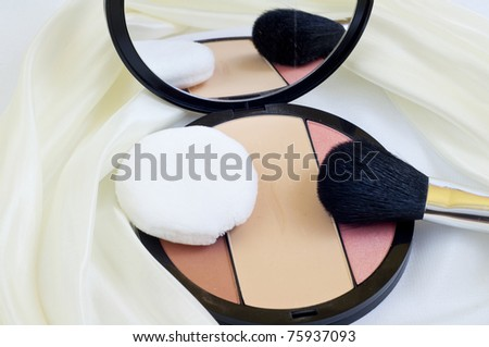 makeup brushes and blush on white background