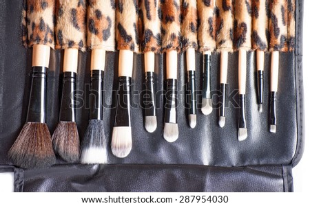 Makeup brushes close up
