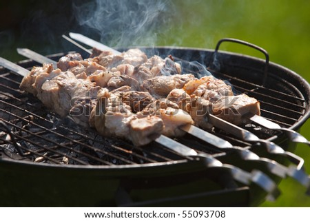Making barbecue on he grill - stock photo