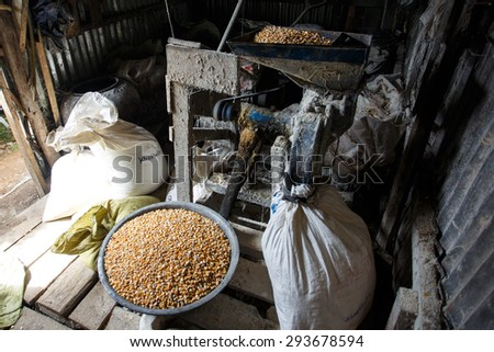 Making Pig Feed  - stock photo
