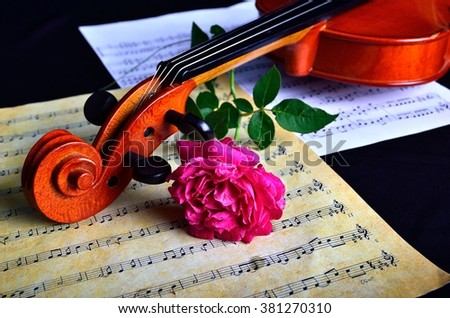 MALACCA, MALAYSIA - 12 August, 2014 : Violin with sheet music and pink rose on black background captured on 12 August, 2014. Still life concept - stock photo