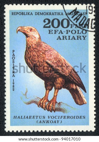 MALAGASY - CIRCA 1982: A stamp printed in MALAGASY shows Madagascar Fish Eagle (Haliaeetus vociferoides, ankoay), from series Birds, circa 1982