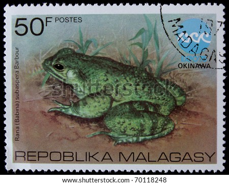 MALAGASY- CIRCA 1970s: A post stamp printed in Malagasy shows frog, circa 1970s