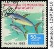 MALAGASY - CIRCA 1982:Stamp shows image of a Thunnus albacares, circa 1982 - stock photo