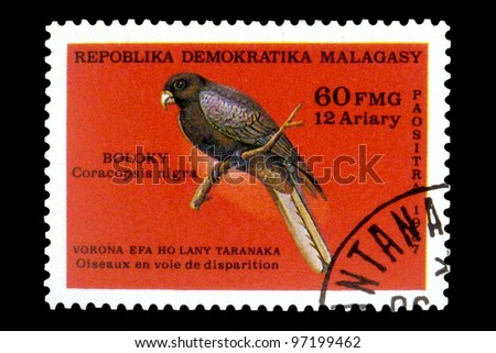 """MALAGASY REPUBLIC - CIRCA 1987: A Stamp printed in Malagasy Republic (Madagascar) shows a Lesser Vasa Parrot with inscription """"Coracopsis nigra"""", series """"Endangered Species"""", circa 1987 - stock photo"""
