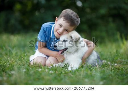 Malamute puppy and boy, best friends; Outdoor portrait - stock photo