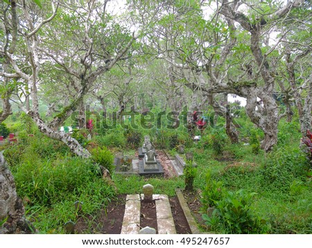 MALANG, INDONESIA - OCTOBER 1, 2016: Muslim graveyard surrounded by trees, Malang, Indonesia.