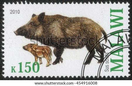 "MALAWI - CIRCA 2010: A post stamp printed in Malawi shows a series of images ""Animal world"", circa 2010 - stock photo"