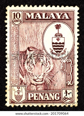 MALAYA - CIRCA 1957: Brown color postage stamp printed in Malaya Penang with image of a Malayan tiger in a bush. - stock photo