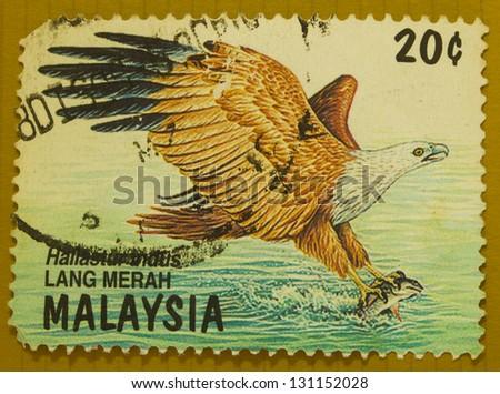 MALAYSIA - CIRCA 1997: A stamp printed in Malaysia shows haliastur indus, circa 1997 - stock photo