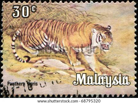 MALAYSIA - CIRCA 1979: A stamp printed in Malaysia shows Tiger -  Panthers tigris, circa 1979 - stock photo