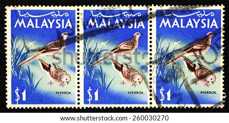 MALAYSIA - CIRCA 1965: Blue color postage stamp printed in Malaysia with image of a pair of Barred Ground Dove (Merbok) for the Malaysian National Bird Series. - stock photo