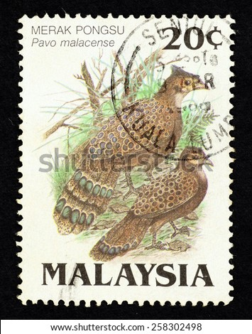 MALAYSIA - CIRCA 1986: Postage stamp printed in Malaysia with image of a pair of Malayan peacock-pheasant bird (Pavo malacense) for the Protected Wildlife of Malaysia Series 2. - stock photo