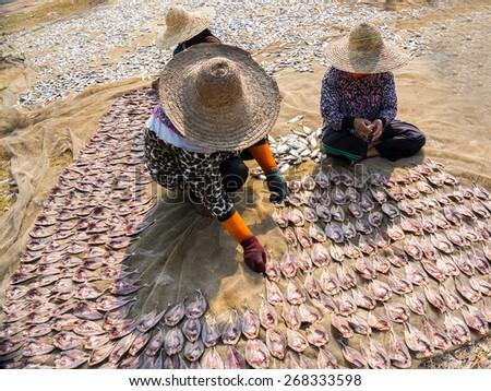malaysian traditional salt fish worker - stock photo