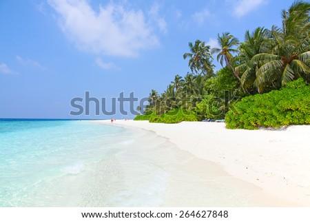 Maldivian island. Paradise in tropics. - stock photo