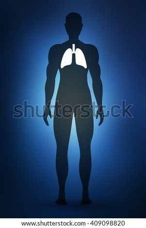 Male anatomy of human respiratory system in 2d view - stock photo