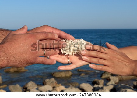 Male and female hands holding sea sponge as a sign of love and loyalty against serene beach landscape - stock photo