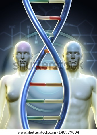 Male and female human figures linked by a dna chain. Digital illustration. - stock photo