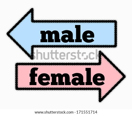 Male and female signs in  blue and pink  arrows concept - stock photo