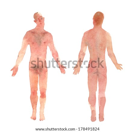 male body front and back view watercolor illustration - stock photo