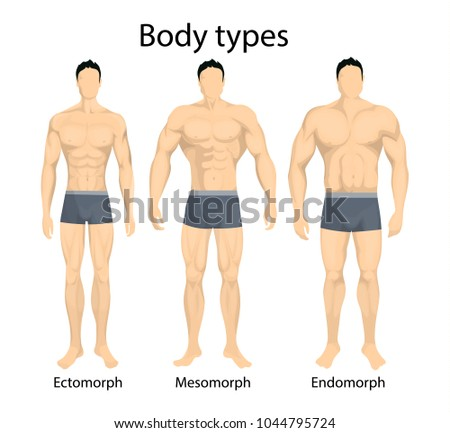 Mesomorph Diet: Find out Which Foods Should Be a Part of ...