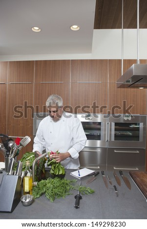 Male chef washing leafy vegetables in commercial kitchen sink - stock photo