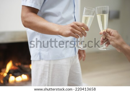 Male couple toasting with champagne in livingroom - stock photo