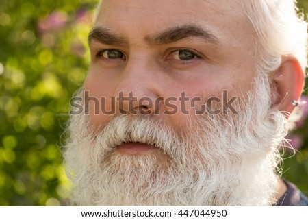 male eye bright striped lens hairy stock photo (royalty free