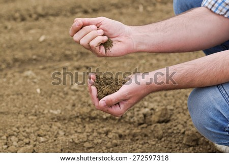 Male Farmer Examines Soil Quality on Fertile Agricultural Farm Land, Agronomist Checking Soil in Hands.