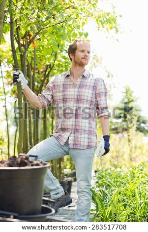 Male gardener looking away while standing at plant nursery
