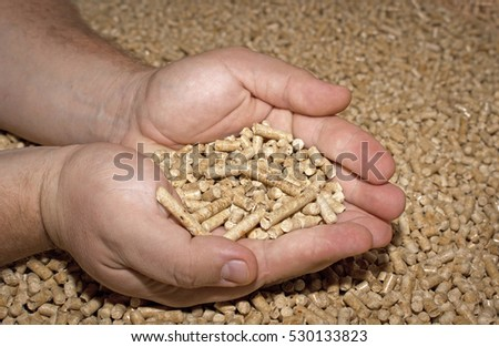 Male hand takes the wood pellets , close up . Wood pellets used as cat litter. Bio fuels .
