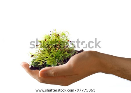 Male hand with moss