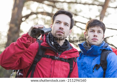 Male hikers with binoculars in forest - stock photo