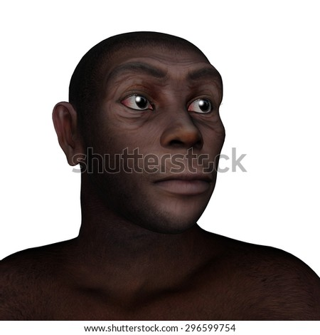 Male homo erectus portrait isolated in white background - 3D render