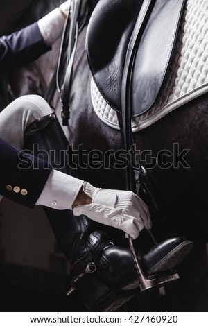 Male horse rider prepearing horse for the riding - install and check the equipment. Unrecognizable. Concept of animal loving and having hobby - stock photo