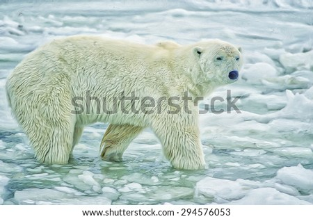 Male polar bear standing in ice on shore of Hudson Bay, photo art
