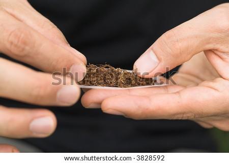 male rolling tobbacco - stock photo