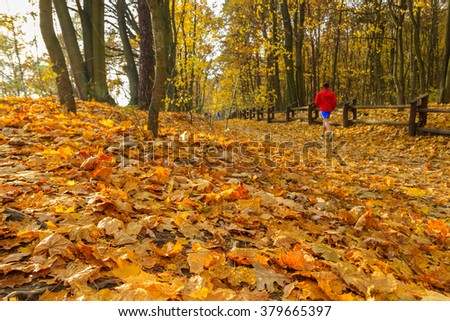 Male runner in a park, golden leaves on the foreground, selective focus