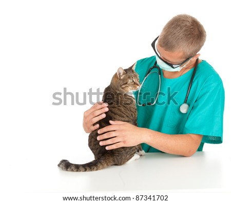 male vet in green protective uniform and mask with cat in surgery - stock photo