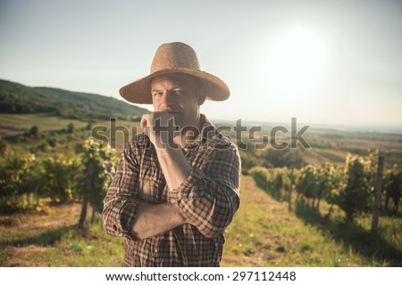 Male vintner with hat posing at vineyard - stock photo