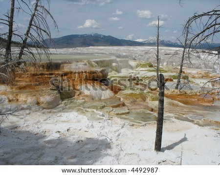 Mammoth Springs Silica Terraces, Yellowstone N.P., USA - stock photo